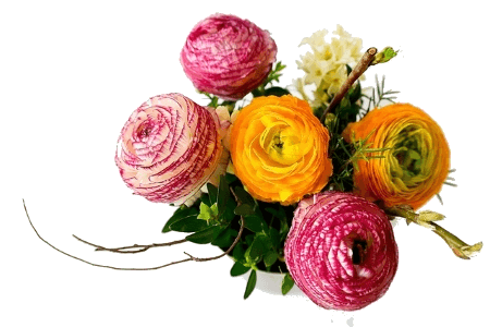 aromatizacion de flores